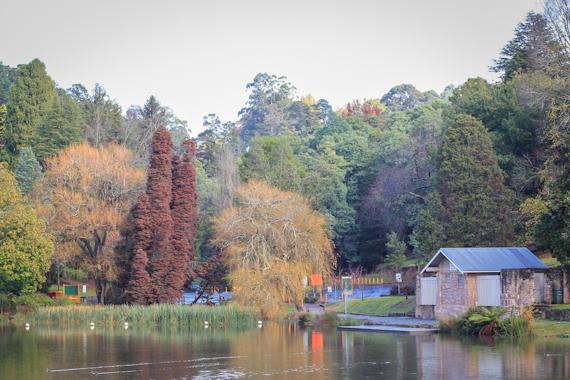 little lakehouse