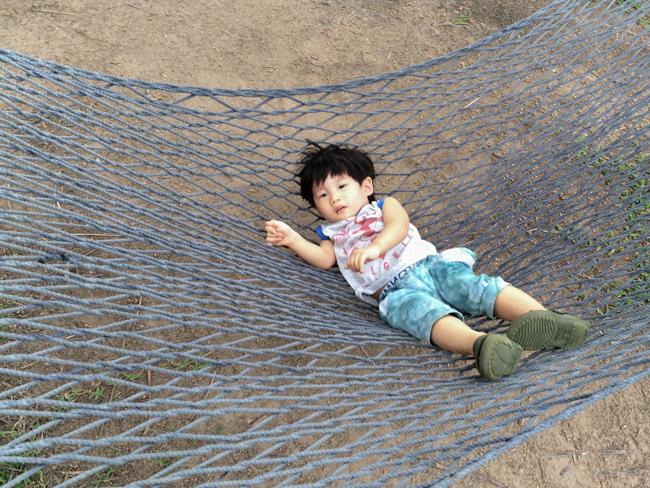 hammock finn